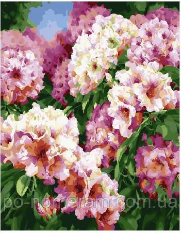 Раскраска для взрослых Садовые цветы (BK-GX25469) 40 х 50 ...