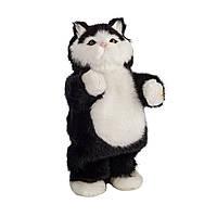 Музыкальный танцующий кот dancind cat doll toy