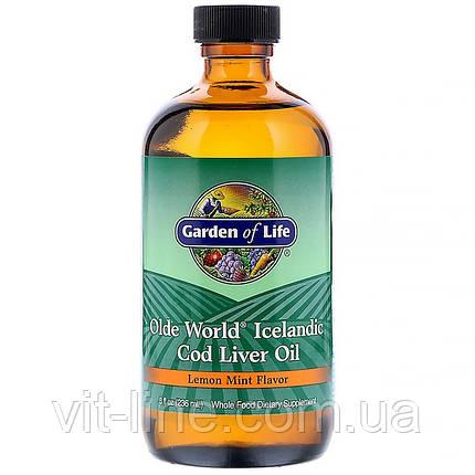Garden of Life, Масло из печени исландской трески Olde World, со вкусом лимонной мяты (236 мл), фото 2