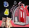 Оригинальный большой прозрачный рюкзак для транспортировки кота , фото 5