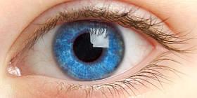 Другие препараты для лечения глазных болезней