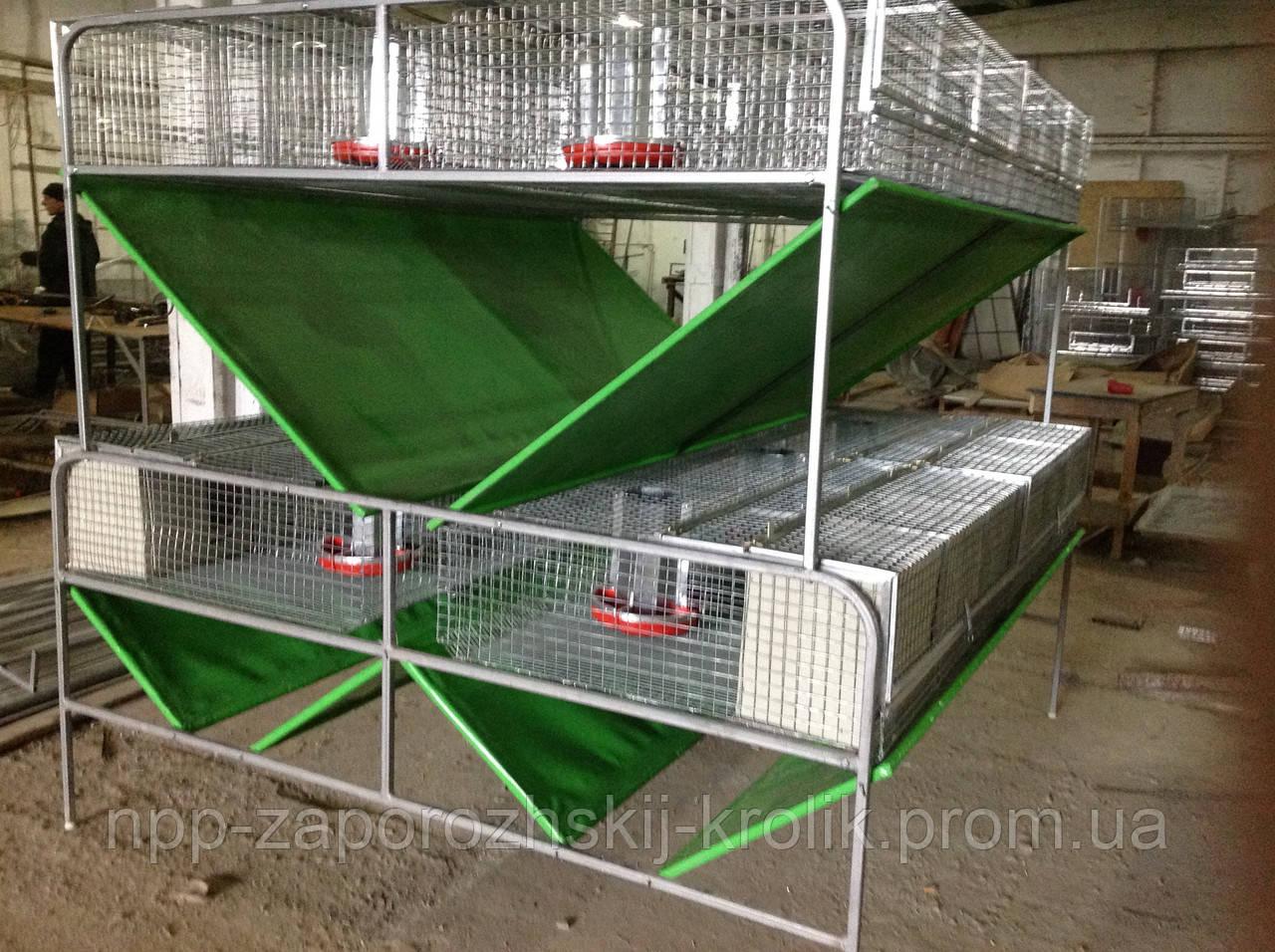 Клетки для кролей промышленного производства