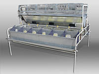 Клетка  для кролей универсальная для кролеводческих хозяйств  БМ -2Ф