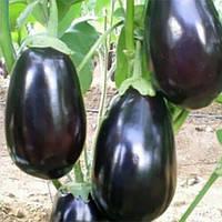 Семена баклажана Раунд F1 Yuksel Tohum 500 шт