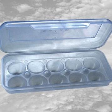 Лоток Контейнер пластиковий для яєць (10шт.)  Од