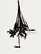 Поводки для хищника LFG 18 см, фото 3
