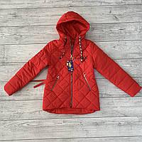 Куртки для девочек весенние в Украине. Сравнить цены 79c097b48ad9a