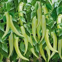 Семена перца острого ES 8716 F1 Ergon от 100 шт