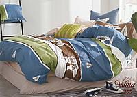 Детское подростковое постельное полуторное белье сатин Вилюта - WILD BEAR