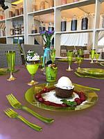 Набор посуды для детского праздника детского дня рождения выпускного утренника небьющиеся тарелки CFP 6шт260мм