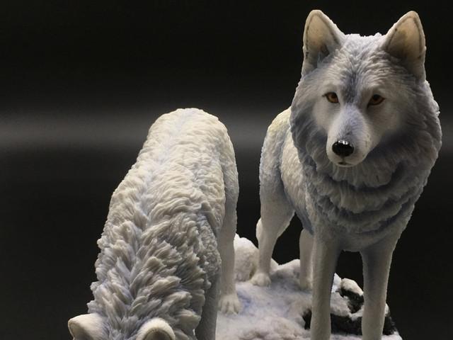Коллекция Волки от Veronese