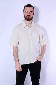 Рубашка мужская propolis 116