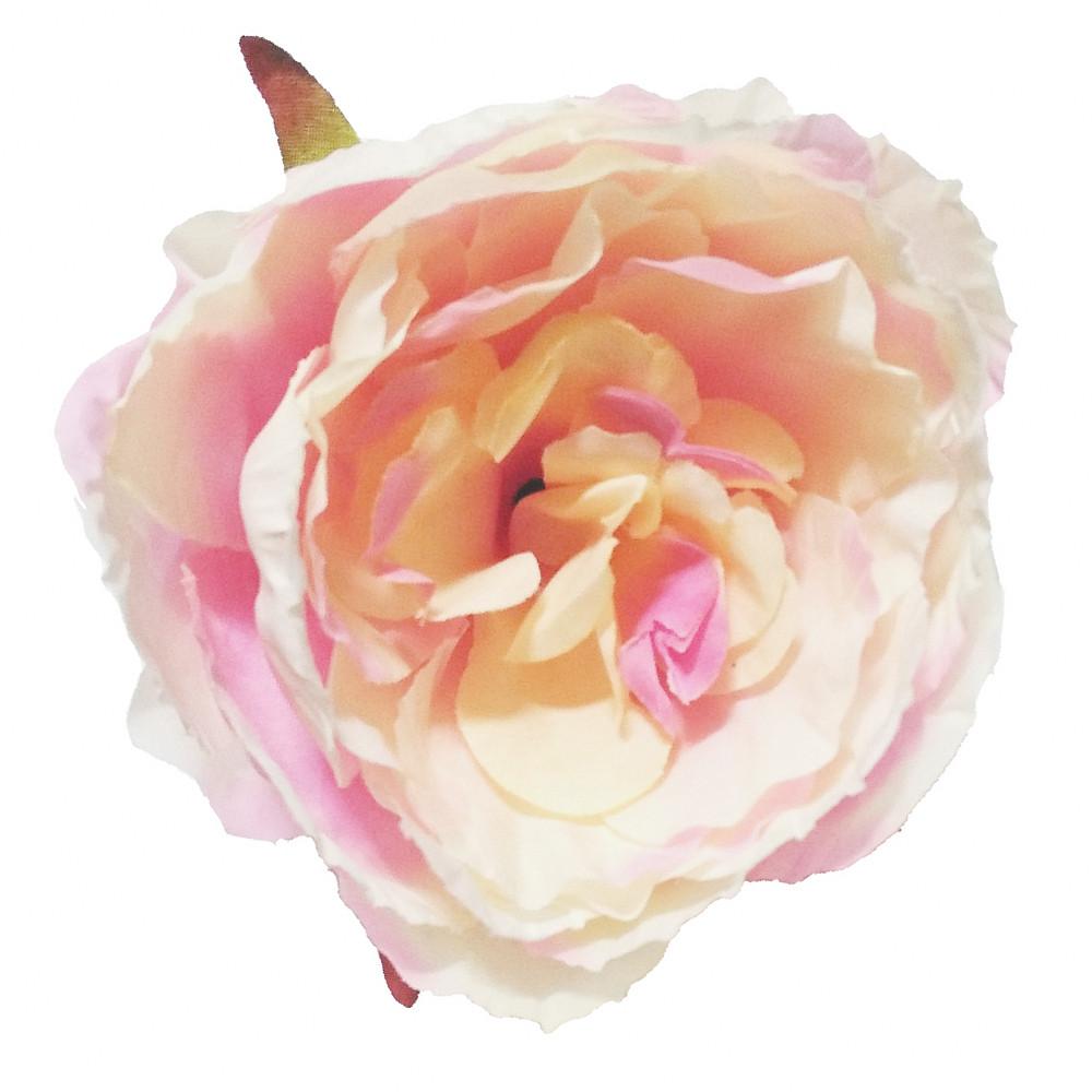 Головка пиона розово-кремовый