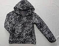 """Куртка демісезонна підліткова для дівчинки, """"Леопардові"""" 10-14 років, біла з чорним"""