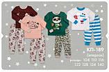 Трикотажная пижама на мальчика. КП 189, фото 2