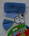 Носки махровые для новорожденных Коровка р. 9-10 (Brand,  Польша), фото 5