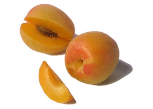 """Колоновидный гибрид абрикос-слива """"Априум"""" открытая корневая система"""
