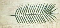 Лист пальмы искусственный 53*20 см