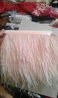 Страусиное перо на ленте (перья марабу) перья страуса цвет пудра