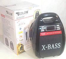 Радио Голон RX-810BT с микрофоном, фото 2
