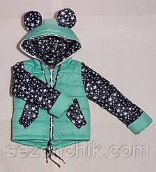 Весенняя детская курточка на девочку с ушками