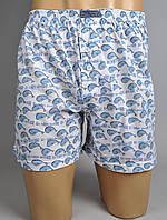 Мужские трусы шорты (100% хлопок) (Все XL)