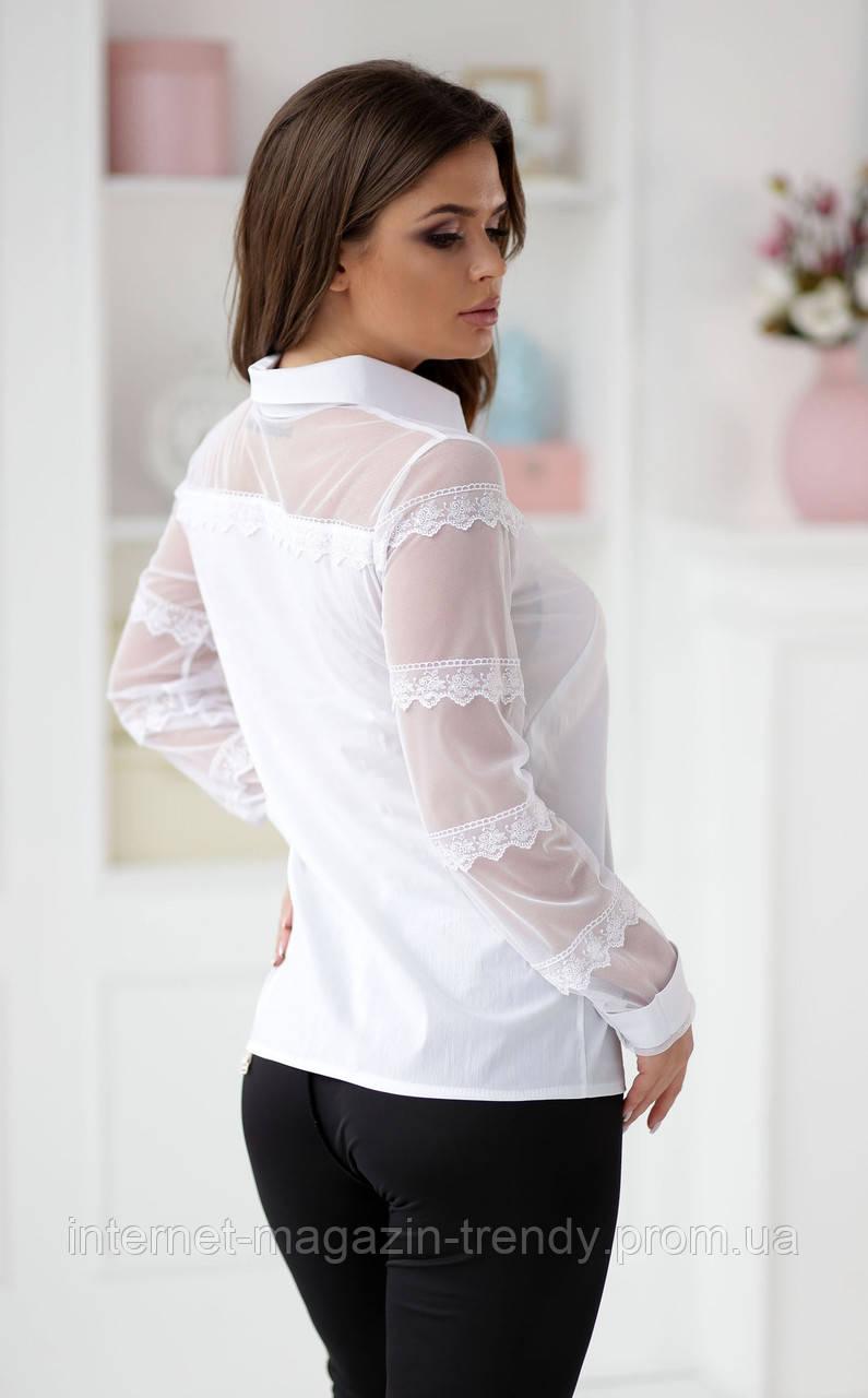 Нежная блуза с кружевными рукавами в двух расцветках  Р50361053