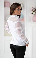 Нежная блуза с кружевными рукавами в двух расцветках  Р50361053, фото 1