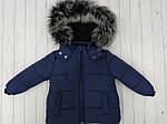 Зимний костюм курточка +полукомбинезон  Темно-синий, фото 2