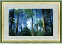 Набор для вышивания «Сосновый бор»
