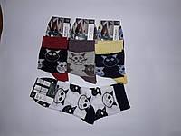 Носки Клевер женские, фото 1