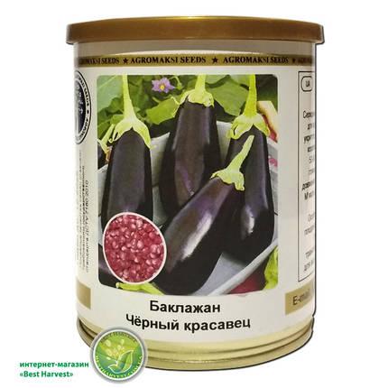 Семена баклажана «Черный красавец» 100 г, инкрустированные (Агромакси), фото 2