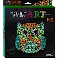 Набор для творчества DankoToys DT STRA-01-02 плетение нитками The String Art