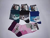 Шкарпетки Конюшина жіночі