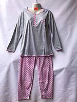 Жіноча піжама (р. 46-56) купити оптом