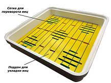 Инкубатор автоматический Рябушка Smart на 40 яиц (r40a), фото 2