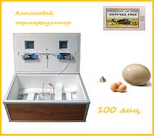 """Инкубатор """"Курочка ряба"""" на 100 яиц (аналоговый терморегулятор) механический переворот"""