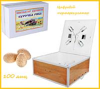 """Инкубатор """"Курочка ряба"""" на 100 яиц ( цифровой терморегулятор) механический переворот, фото 1"""