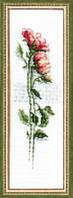 Набор для вышивки «Розы»