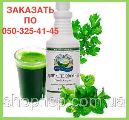 Хлорофилл жидкий (хлорофил) НСП. Хлорофилл Жидкий NSP. Натуральные БИОДОБАВКИ