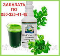 Хлорофилл жидкий (хлорофил) НСП. Натуральные препараты для лечения желудочно-кишечного тракта