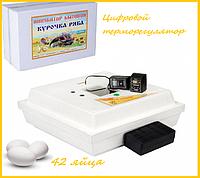 """Инкубатор """"Курочка ряба"""" на 42 яиц ( цифровой терморегулятор) механический переворот, фото 1"""