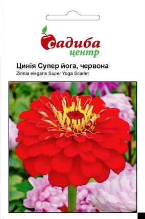 Семена циннии (Майоры) Супер Йога красная 0,5 г, Hем Zaden, фото 2