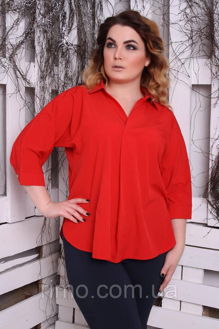 Блуза большого размера Айрис однотон (3 цвета)
