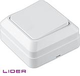 Выключатель одноклавишный LiDER Legenda LVO10-775, фото 3