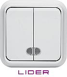 Выключатель двухклавишный с подсветкой LiDER Nova LVO10-881, фото 2
