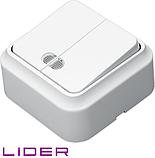 Выключатель двухклавишный с подсветкой LiDER Nova LVO10-881, фото 3