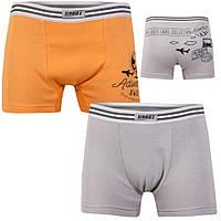 Детские трусы-шорты для мальчика *Марки* размер 34