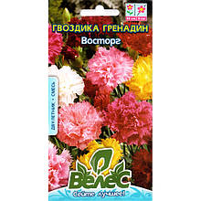 """Семена гвоздики """"Восторг"""" (0,2 г) от ТМ """"Велес"""""""