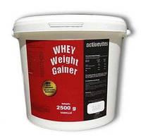 Вітамінний Activevites Whey Weight Gainer 2,5 кг.